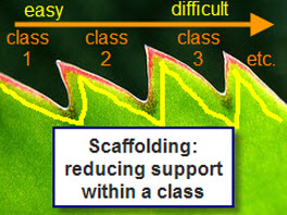 Scaffolding adds a point to each class.